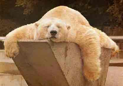 Noites mal dormidas podem causar ansiedade e até depressão